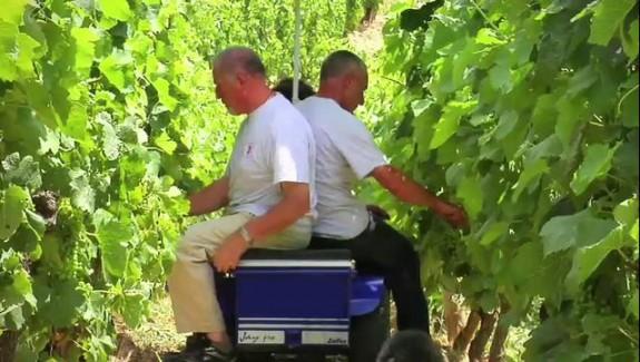 Le chariot électrique du vigneron
