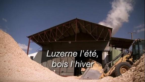 Luzerne l'été, bois l'hiver