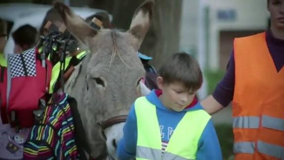 Des ânes pour les cartables