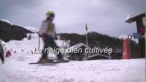 La neige bien cultivée