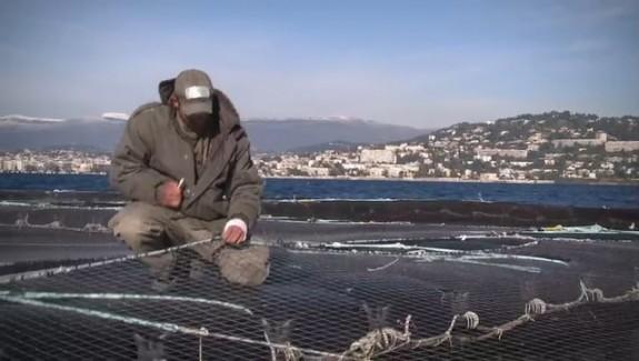 L'aquaculture bio